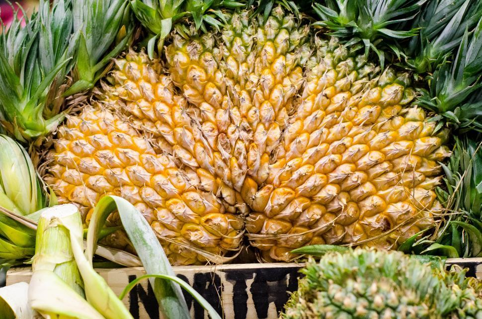 Download Free Stock HD Photo of Pineapple  Online