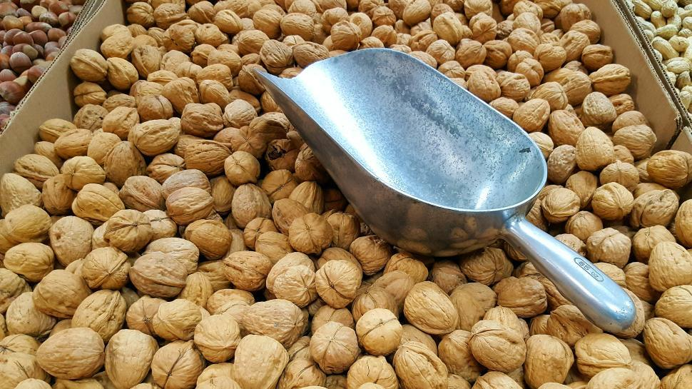 Download Free Stock HD Photo of Walnuts In Shells Online