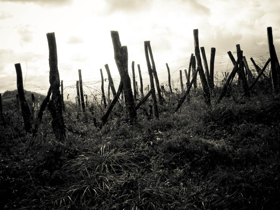 Download Free Stock HD Photo of fences in the countryside Online