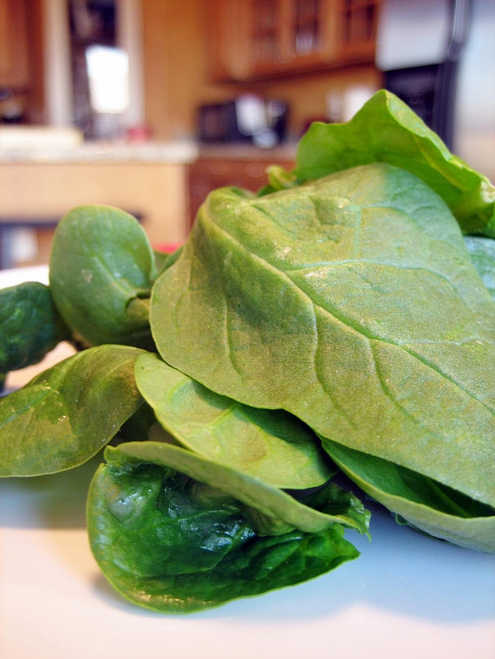 Download Free Stock HD Photo of Fresh Spinach Online