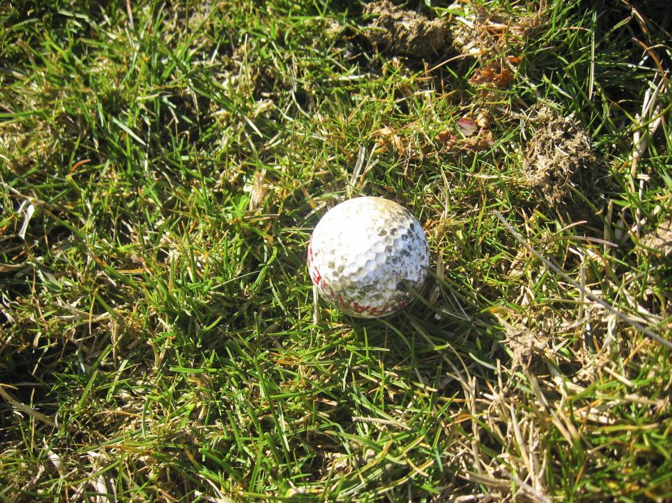 Download Free Stock HD Photo of dirty golf ball Online