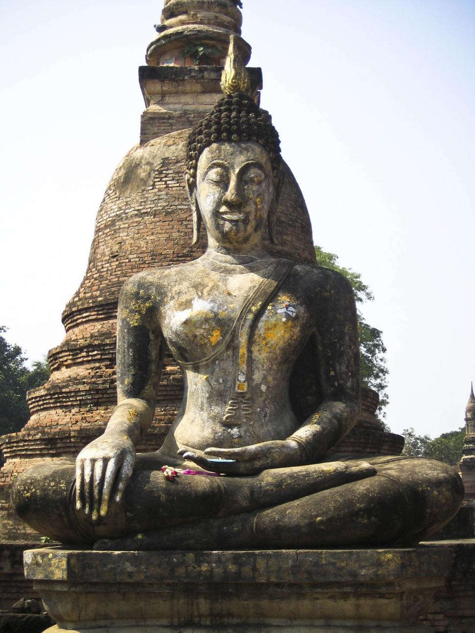 Download Free Stock HD Photo of buddah statue Online