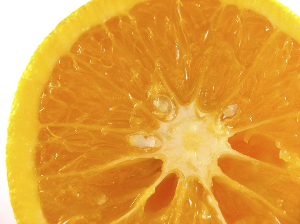 Download Free Stock HD Photo of Orange close up Online