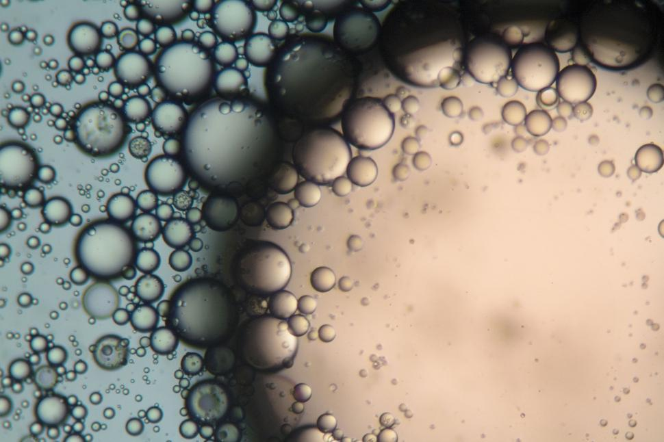 Download Free Stock HD Photo of Bubbles under the microscope Online