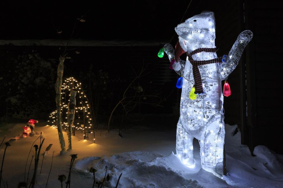 Download Free Stock HD Photo of Lighted bear Online