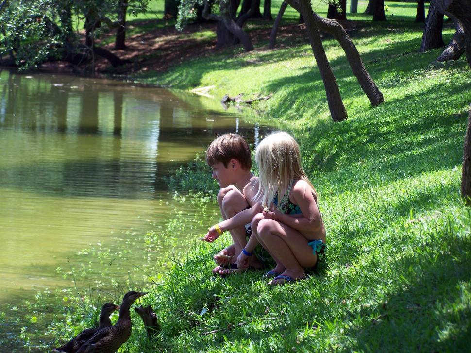 Download Free Stock HD Photo of Feeding the Ducks Online