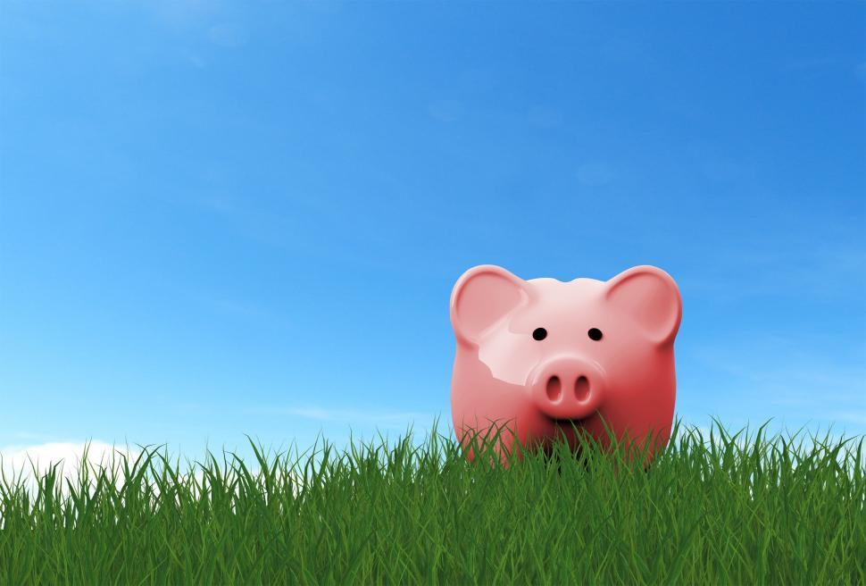 Download Free Stock HD Photo of Piggy Bank on the Grass - Savings Concept Online