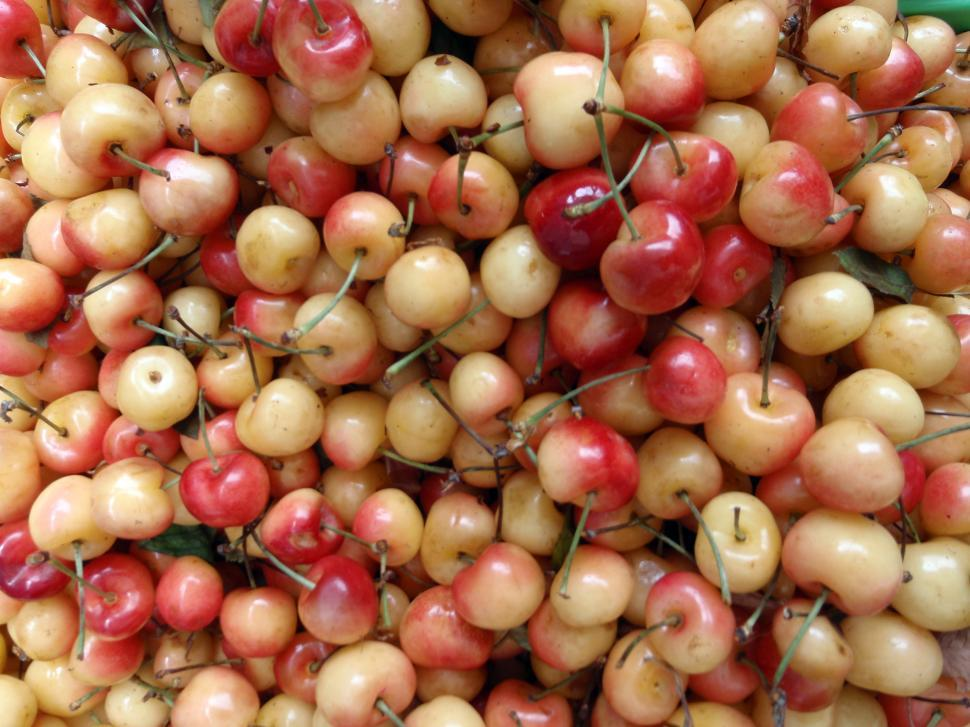 Download Free Stock HD Photo of Bunch of red and yellow cherry Online