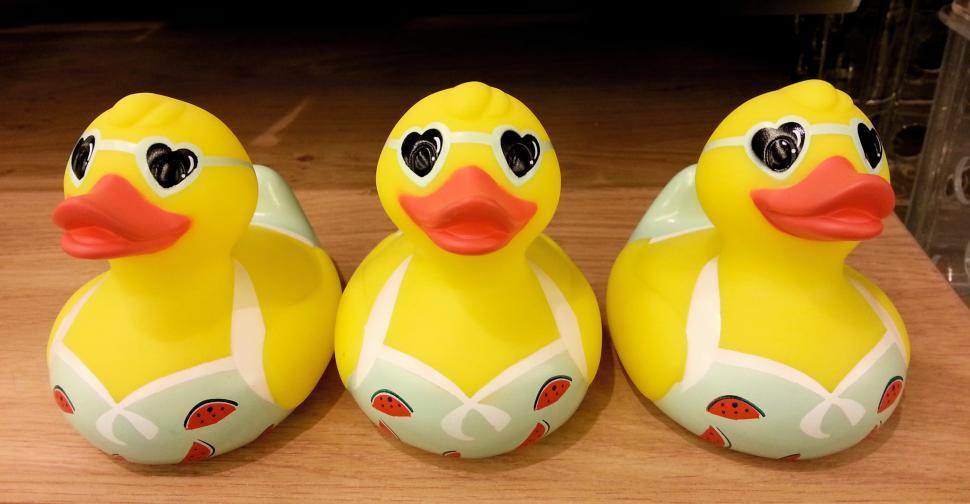 Download Free Stock HD Photo of Three Little Ducks  Online