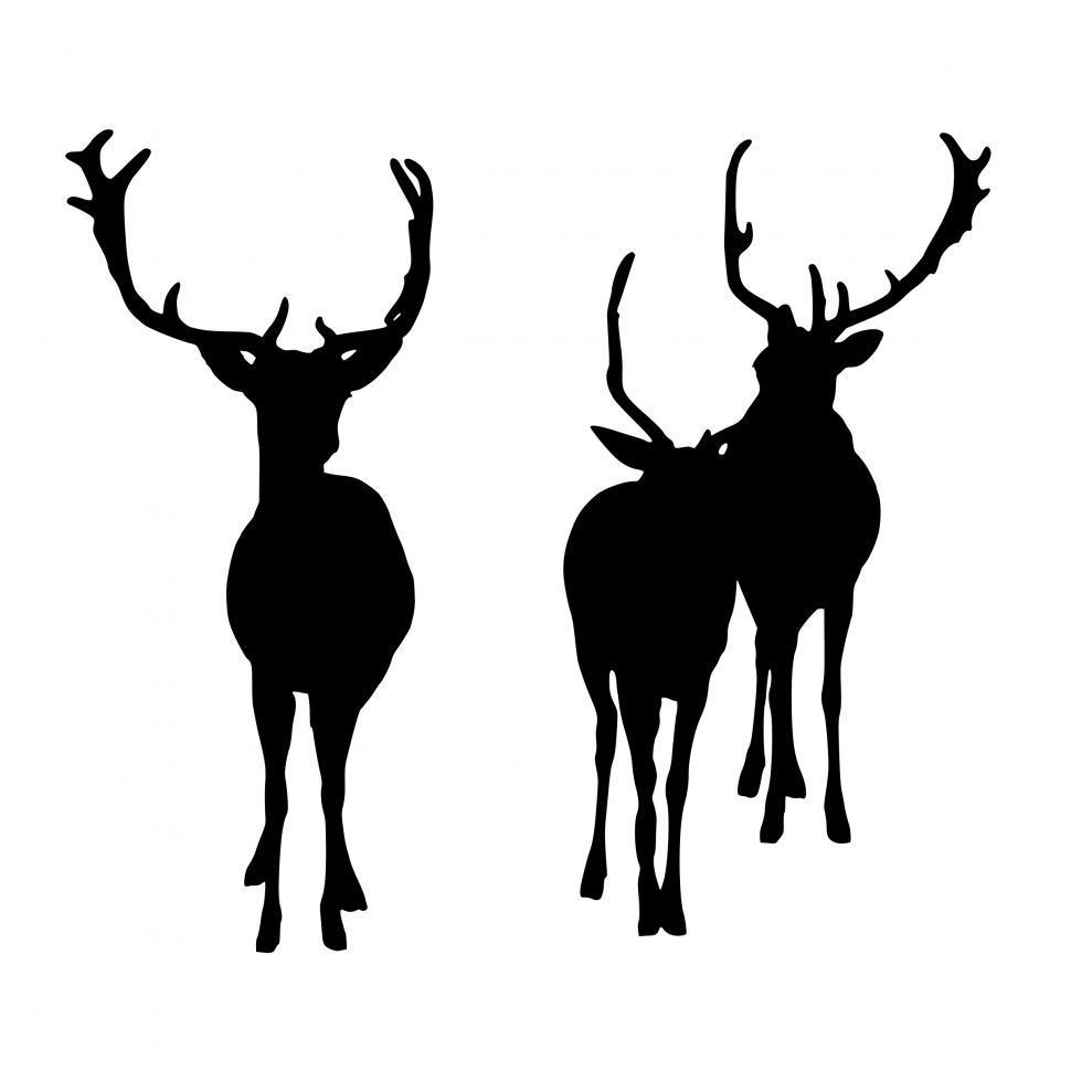 Download Free Stock HD Photo of deer wildlife silhouette  Online