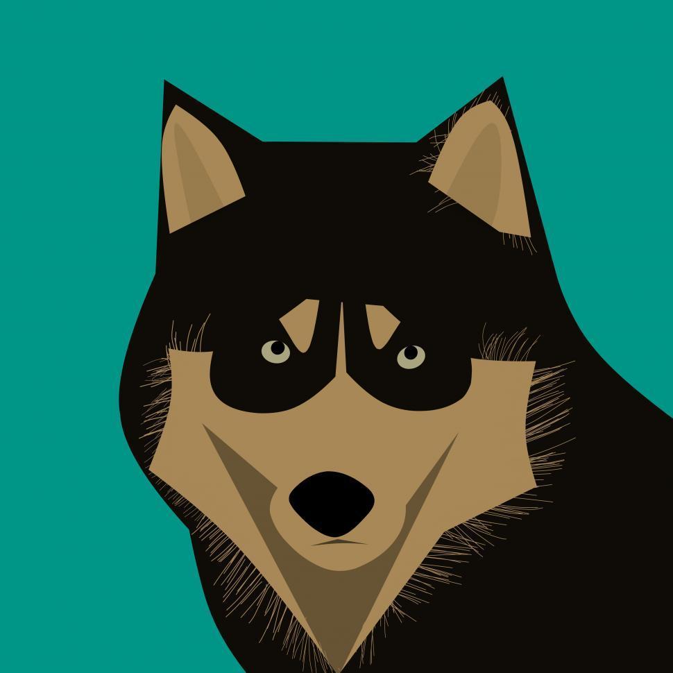 Download Free Stock HD Photo of dog husky animal  Online
