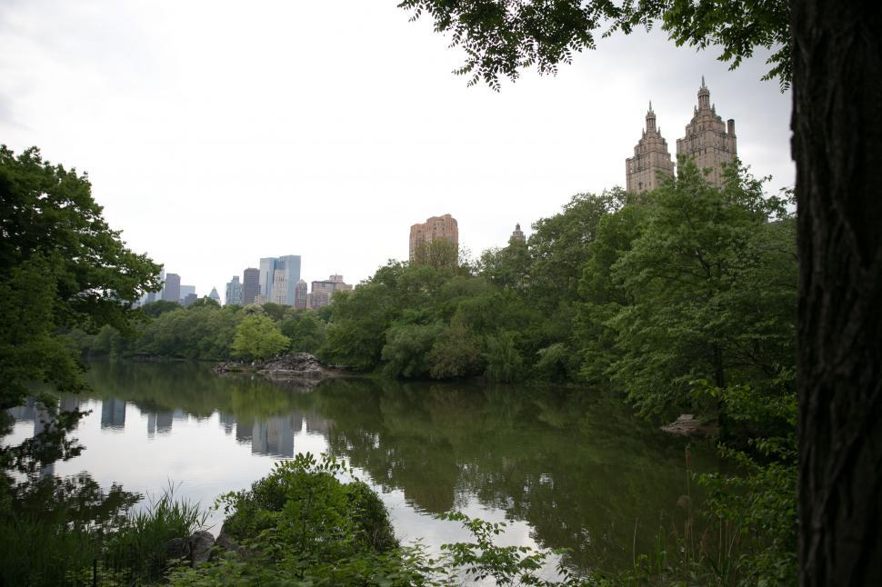Download Free Stock HD Photo of Central park pond, New York Online