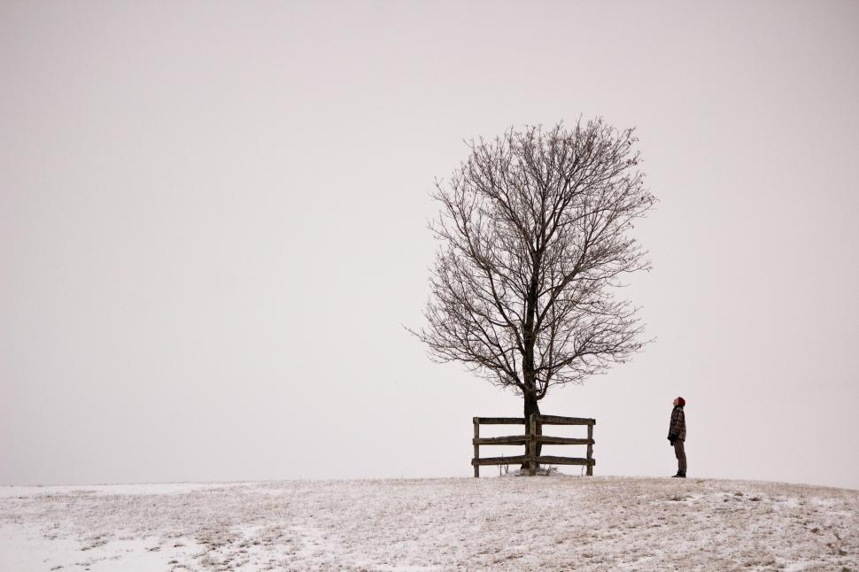 Download Free Stock HD Photo of A young Caucasian man and a tree on a snowy hill Online