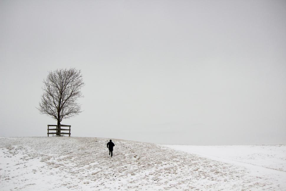Download Free Stock HD Photo of A running figure and a tree on a snowy hill Online