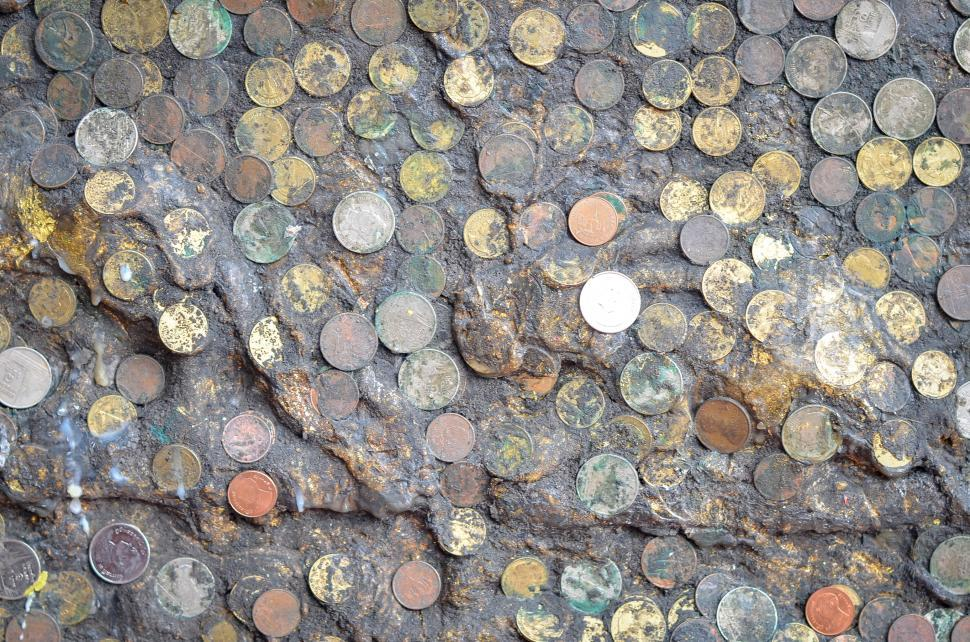 Download Free Stock HD Photo of Coins in Mud Online
