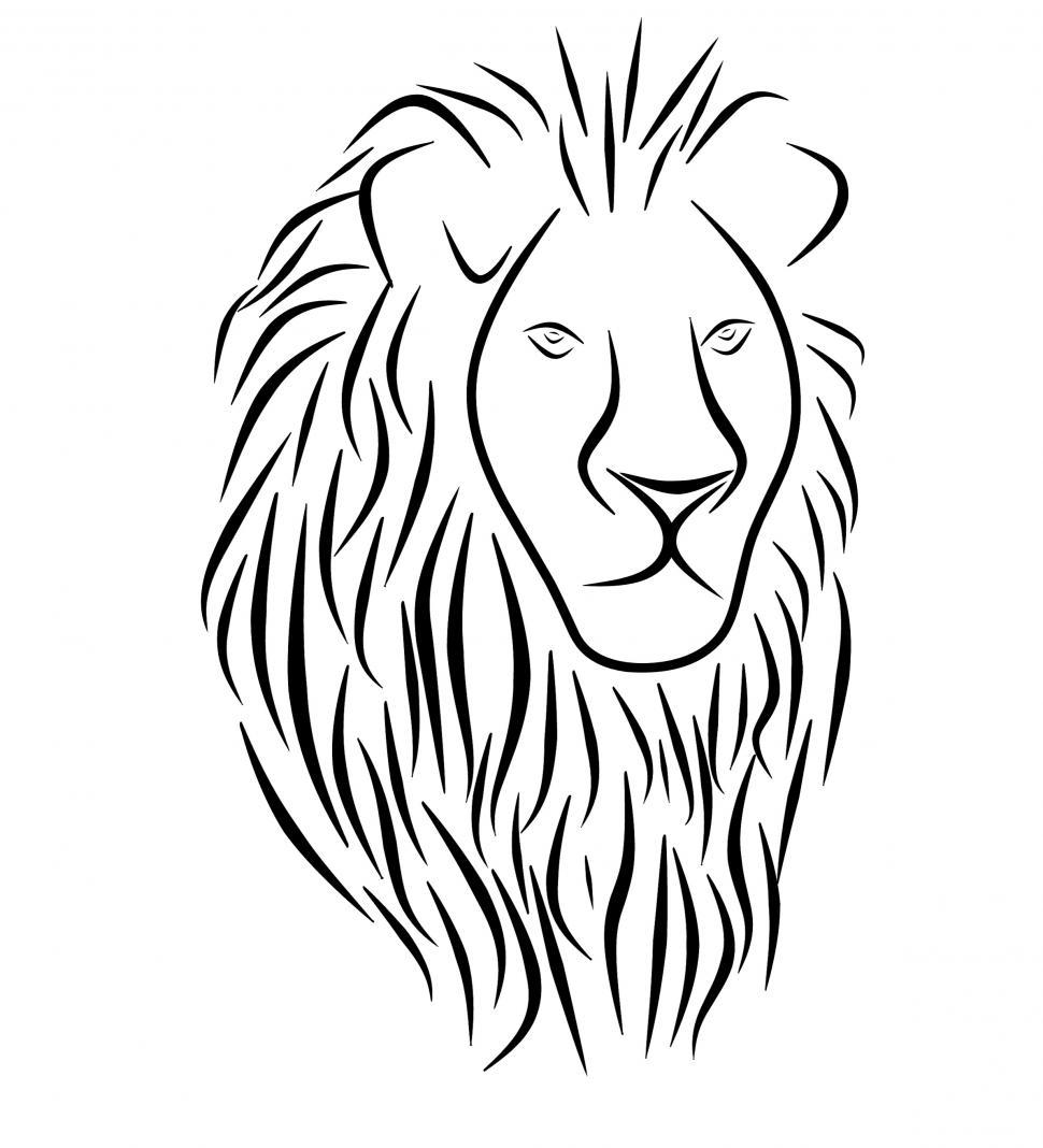 Download Free Stock HD Photo of lion tattoo  Online