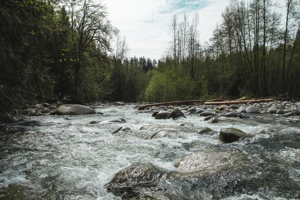 Download Free Stock HD Photo of River rapids surrounded by pebble stones and trees Online