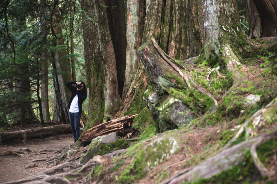 Download Free Stock HD Photo of A nature photographer in the forest Online