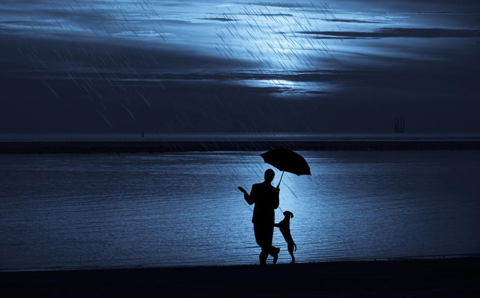 Download Free Stock HD Photo of man and dog Silhouette  Online