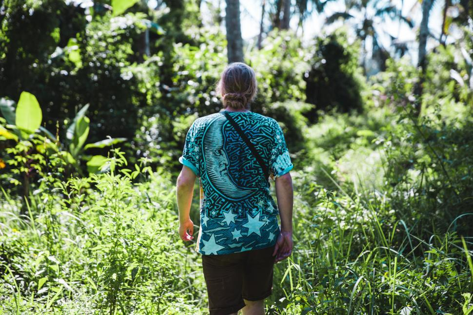 Download Free Stock HD Photo of A hiker walking in the forest Online