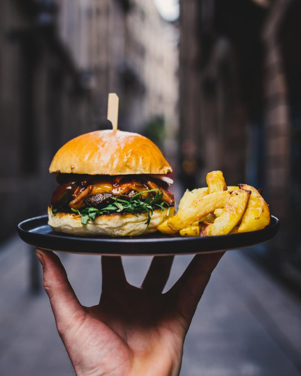 Download Free Stock HD Photo of Hamburger and fires served on a platter Online