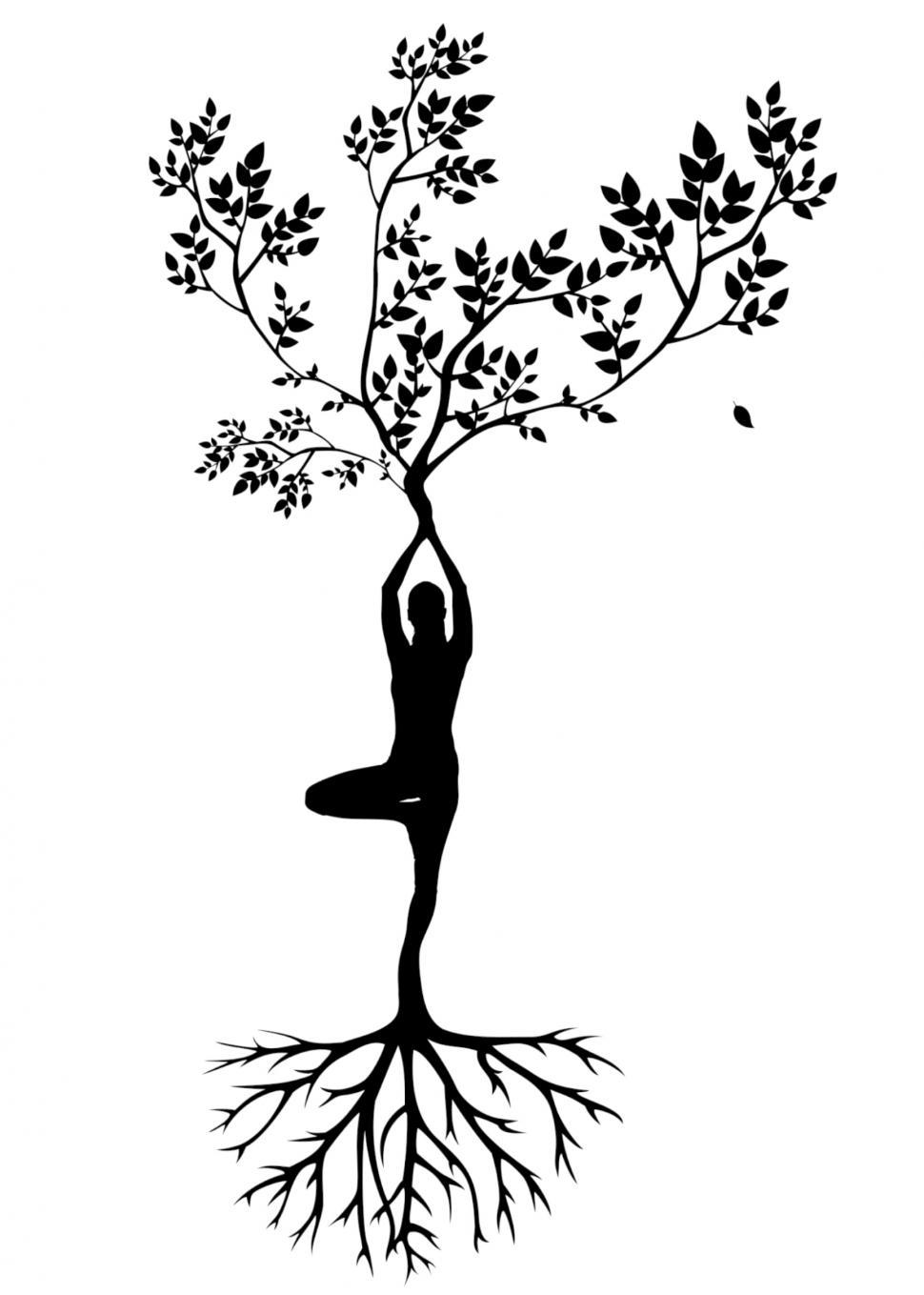 Download Free Stock HD Photo of yoga pose Silhouette  Online