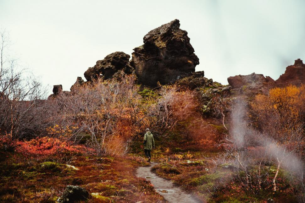 Download Free Stock HD Photo of A hiker in autumn forest Online