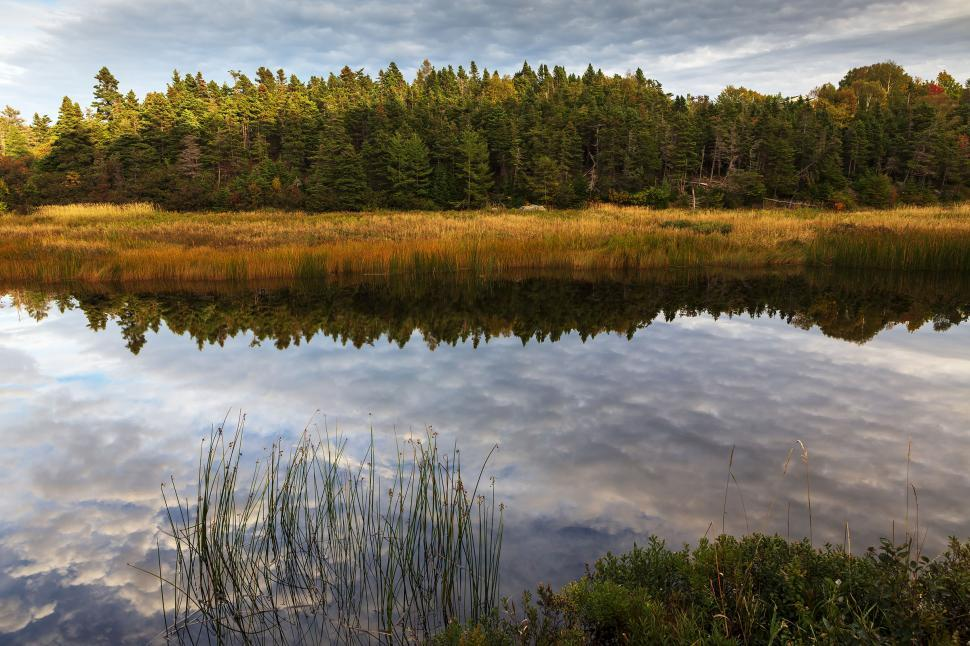 Download Free Stock HD Photo of Autumn reflections Online