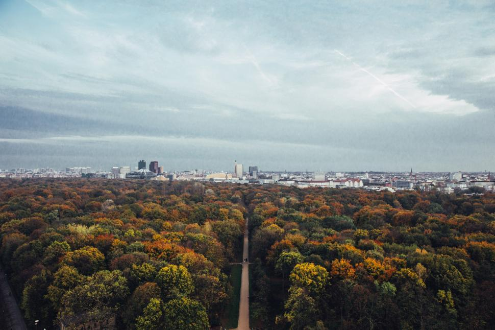 Download Free Stock HD Photo of City in the backdrop of fall forest Online