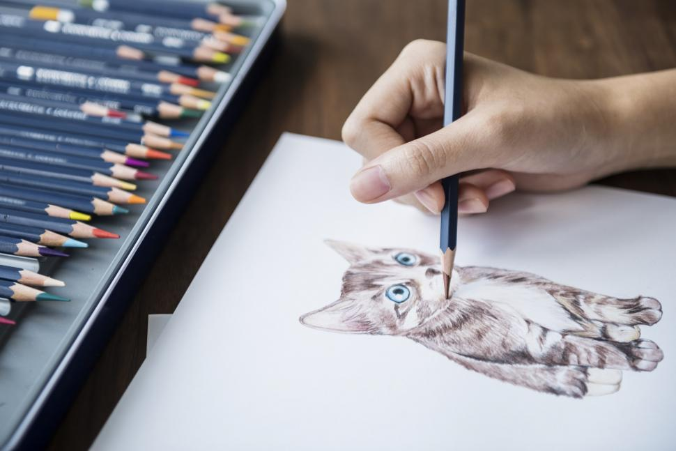 Download Free Stock HD Photo of Close up of a hand sketching a cat Online