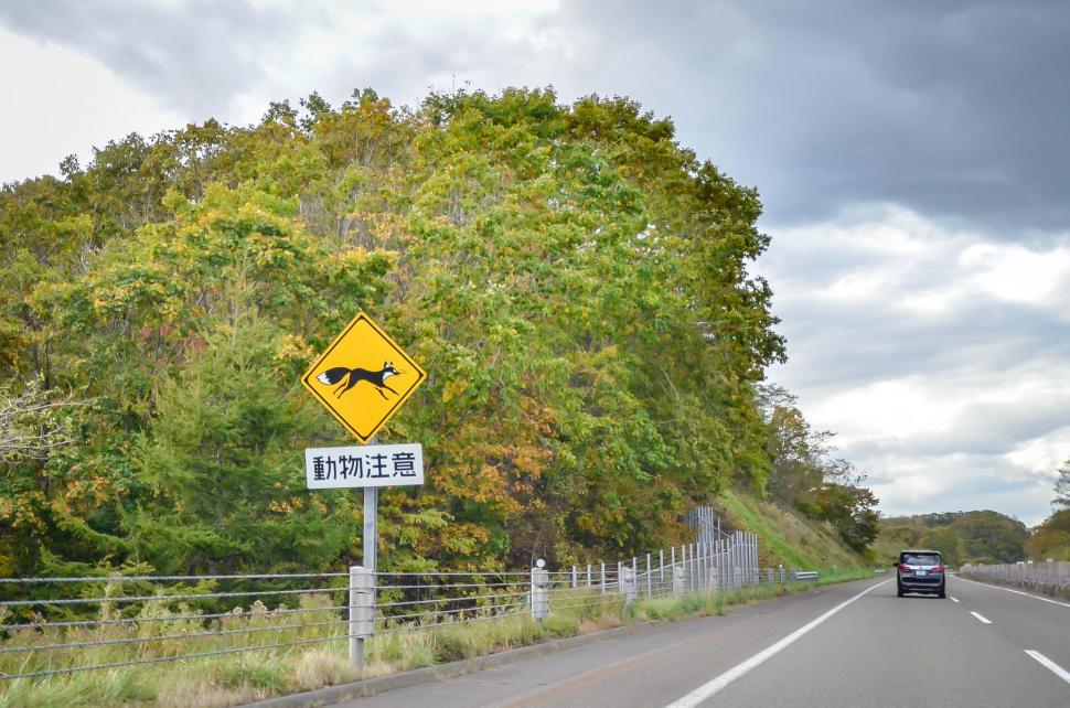 Download Free Stock HD Photo of Driving on Japanese Highway Online