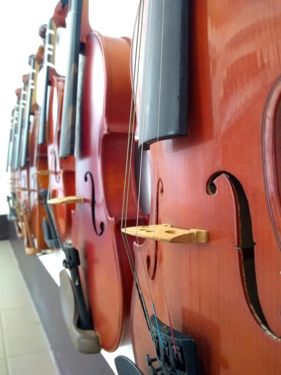 Download Free Stock HD Photo of Close up of a row of violins  Online