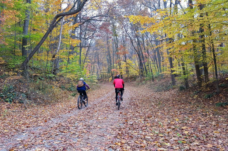 Download Free Stock HD Photo of Bikers In Autumn Online