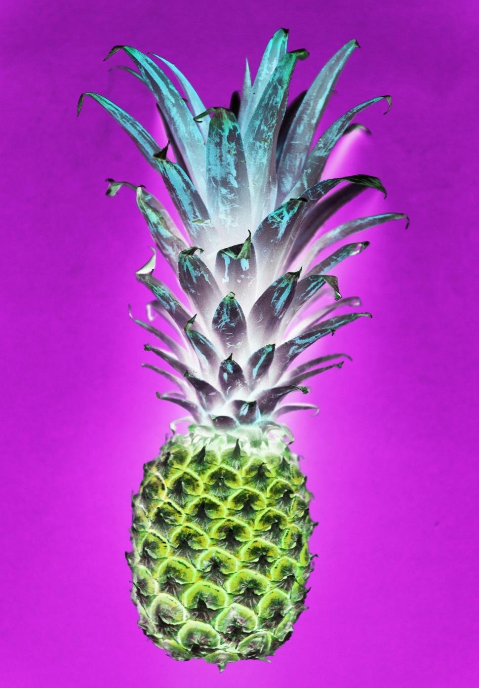 Download Free Stock HD Photo of A color inverted image of a pineapple Online