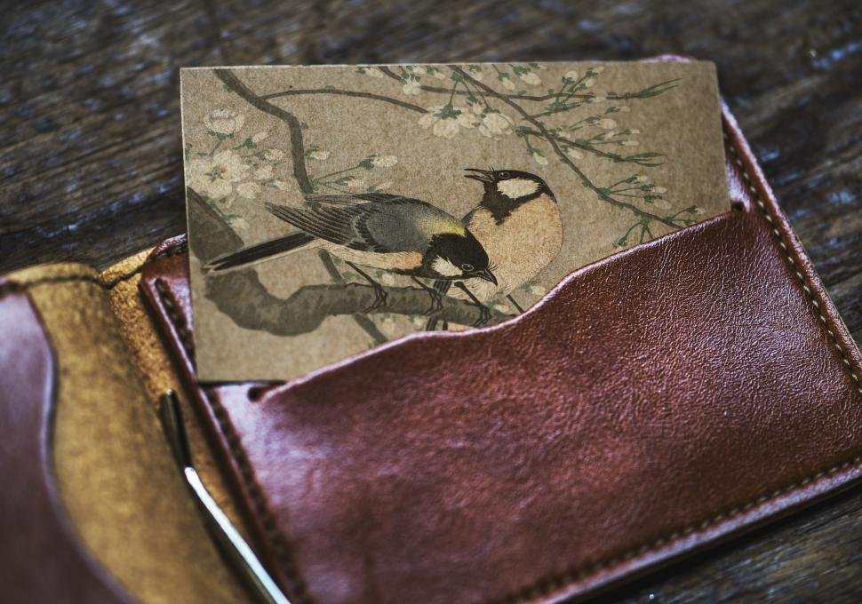 Download Free Stock HD Photo of Close up of birds in a picture half inserted in a wallet pocket Online