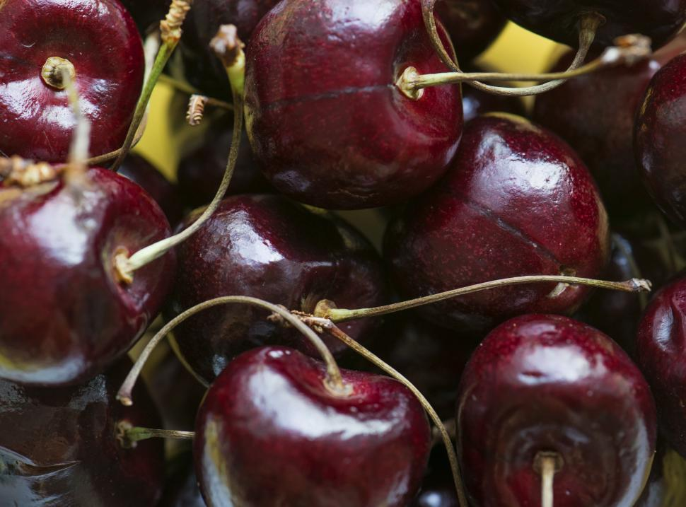 Download Free Stock HD Photo of Bright red cherries with stalks Online