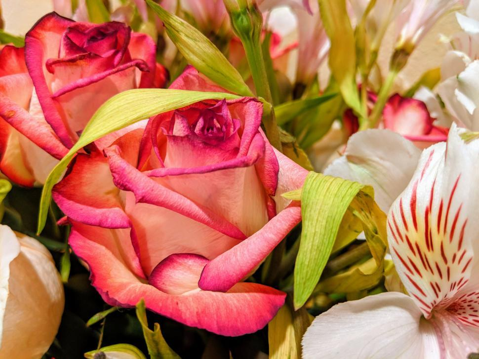 Download Free Stock HD Photo of Bouquet of Flowers - Rose, Tiger Lily, Pink Rose  Online