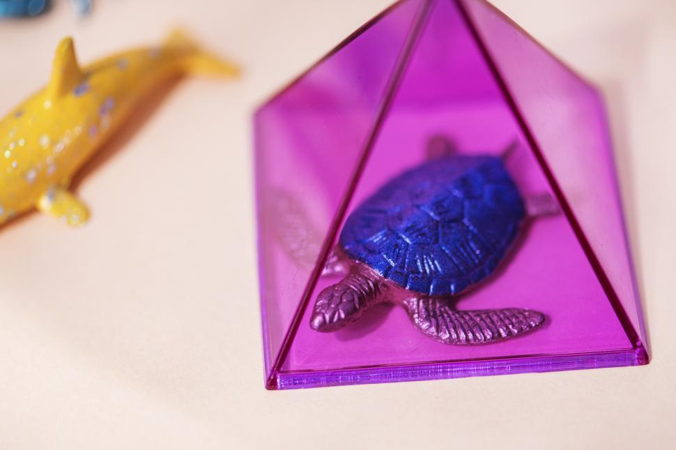 Download Free Stock HD Photo of Glittery toy turtle in a prism Online