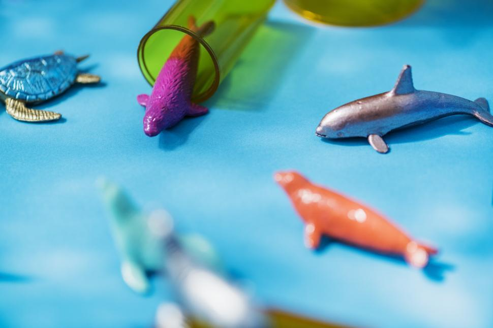 Download Free Stock HD Photo of Close up of colorful toy sea animals Online