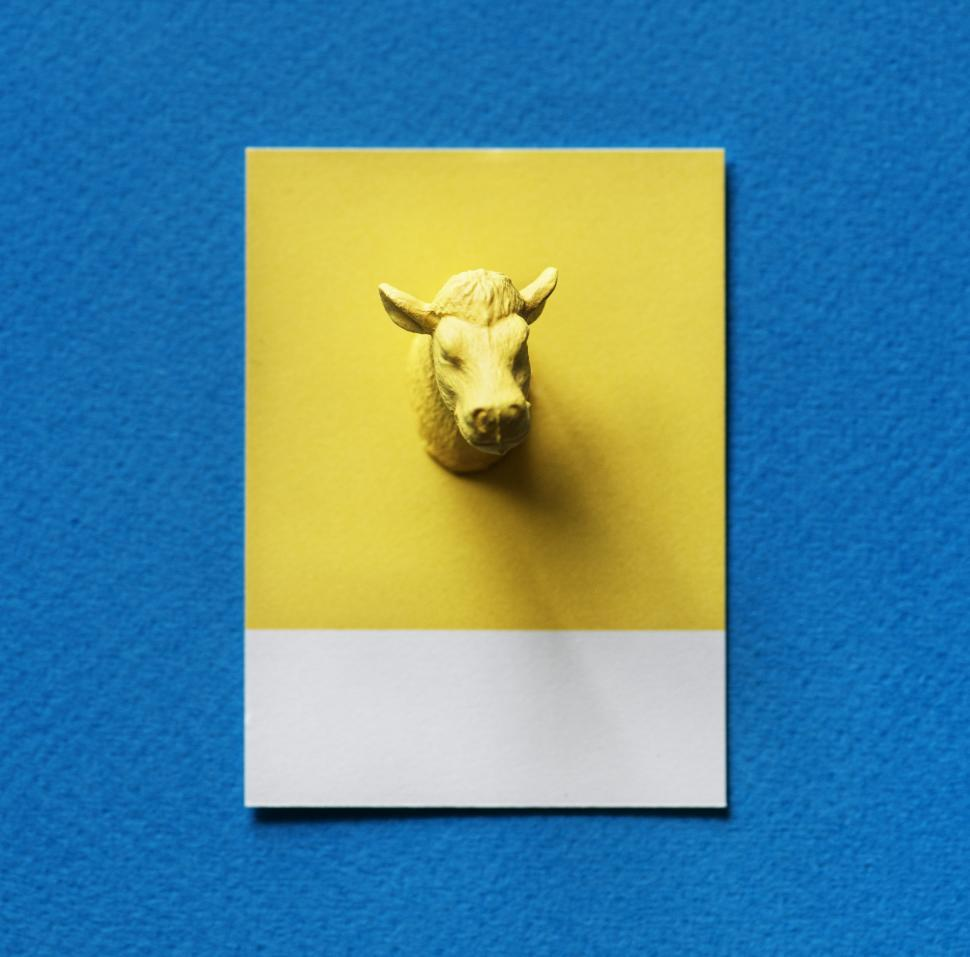 Download Free Stock HD Photo of Flay lay of a miniature toy bull s head on a spaced cardboard frame Online