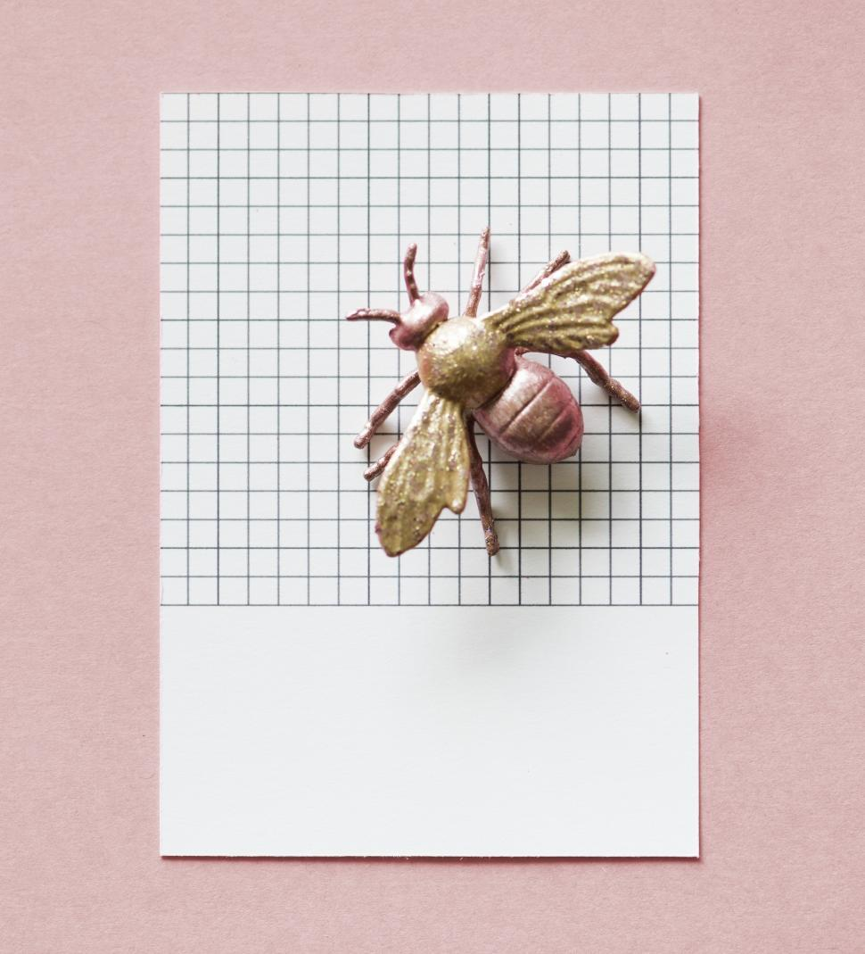 Download Free Stock HD Photo of Flat lay of a toy fly on a paper with black grid lines Online