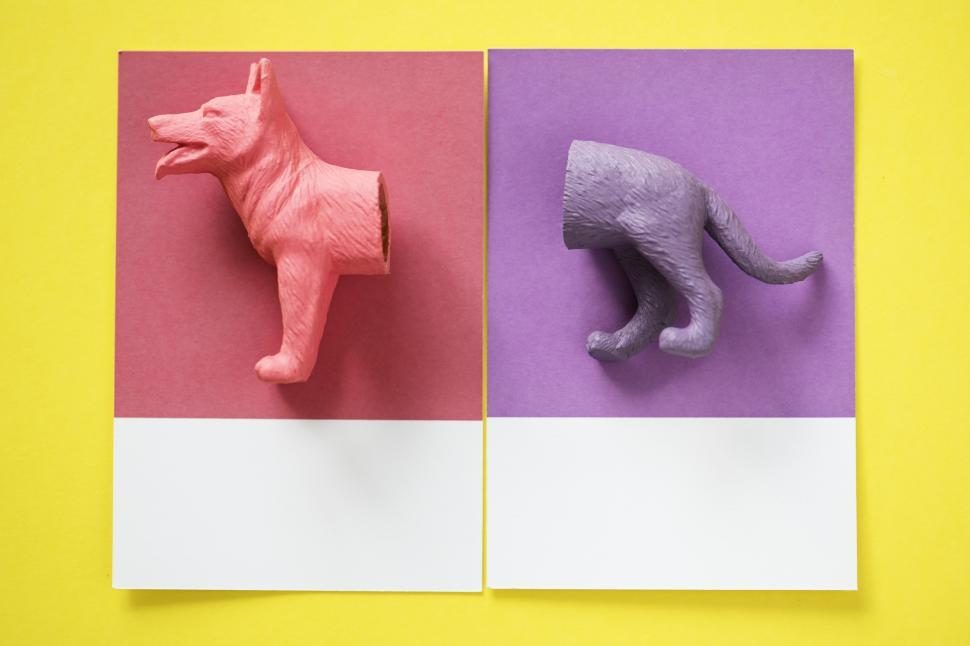 Download Free Stock HD Photo of Flay lay of a miniature toy dog s equal halves in different colors on a spaced cardboard frames Online