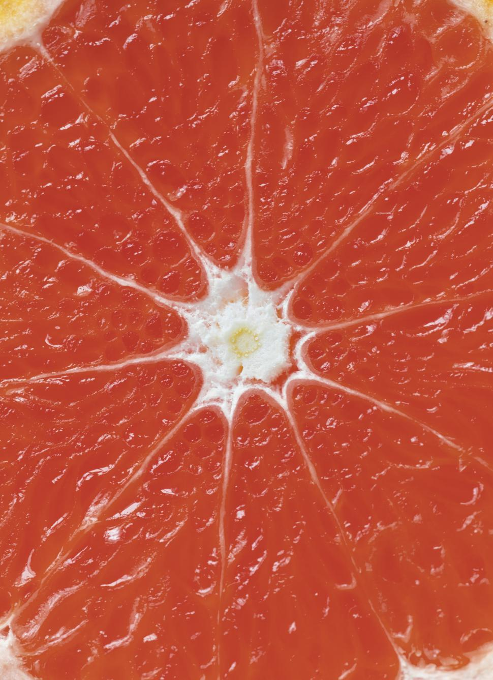 Download Free Stock HD Photo of Close up of a grapefruit slice Online
