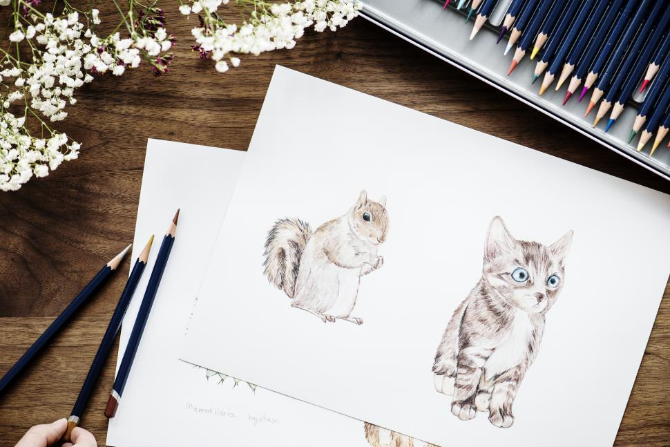 Download Free Stock HD Photo of A sketch surrounded with color pencils Online