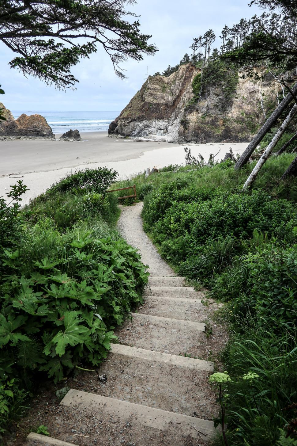 Download Free Stock HD Photo of A path to the beach Online