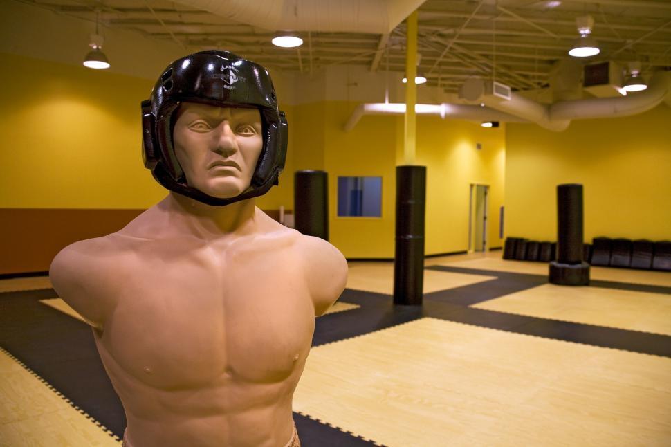 Download Free Stock HD Photo of martial arts studio interior Online