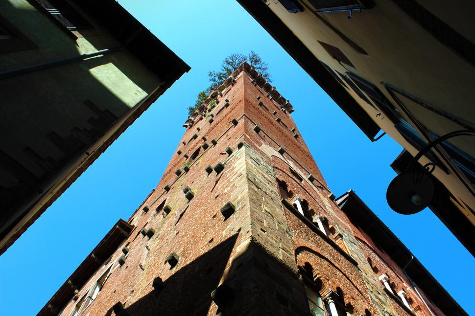Download Free Stock HD Photo of Guinigi Tower - Lucca - Italy - Perspective From the Ground Look Online