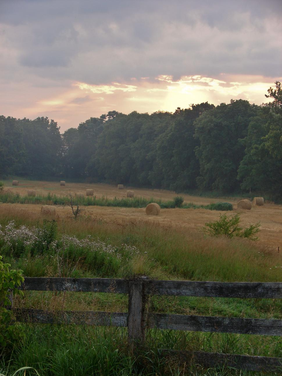 Download Free Stock HD Photo of Rural Summer MorningRural Summer Morning 2009 - YS, OH Online