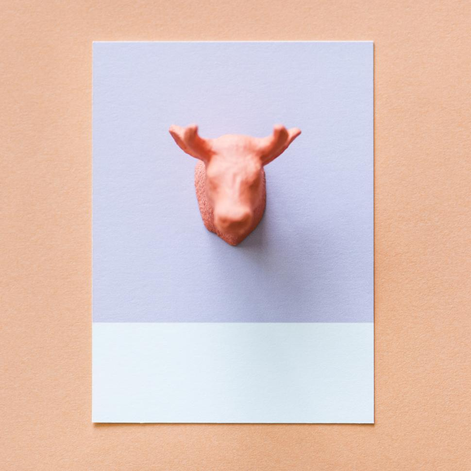 Download Free Stock HD Photo of Flay lay of a miniature toy moose s head on a spaced cardboard frame Online