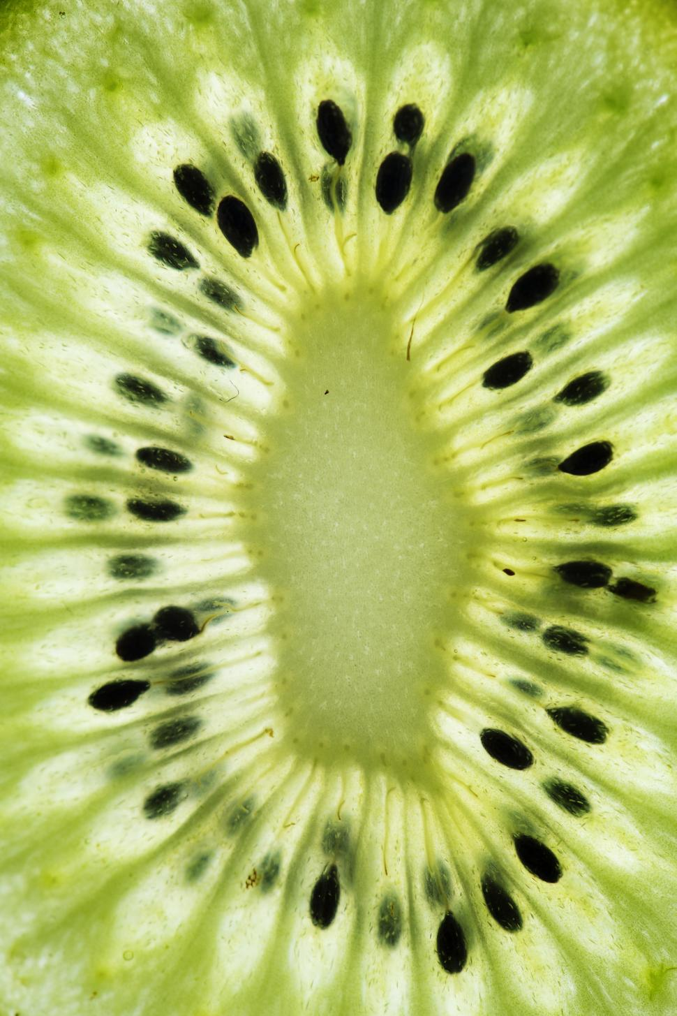 Download Free Stock HD Photo of Close up of a kiwi slice Online
